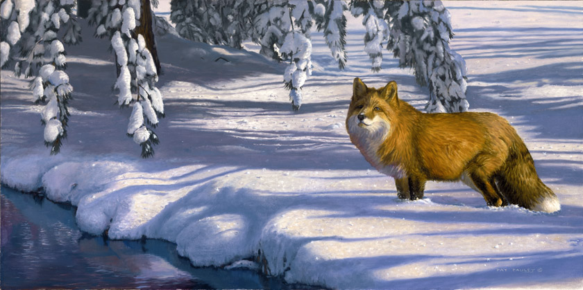 Winter Blues Red Fox Oil Painting by Pat Pauley